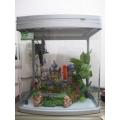Bể  Minjiang R3 - 390