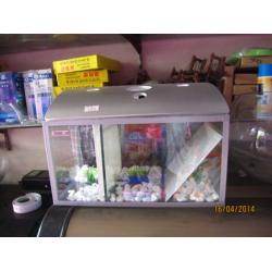 Bể cá chọi nhiều ngăn có nắp