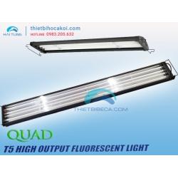 Đèn Odyssea Quad T5HO 4 bóng 60cm