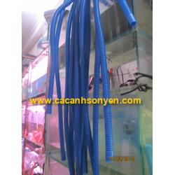 Ống xanh dẫn nước máy lọc