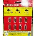 Thuốc trị nấm cá Fungus Cure (viên nang)