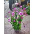 Bụi hoa số 2