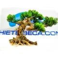 Cây giả gỗ bonsai mini